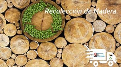 Recolección de Madera Rutas de Reciclaje