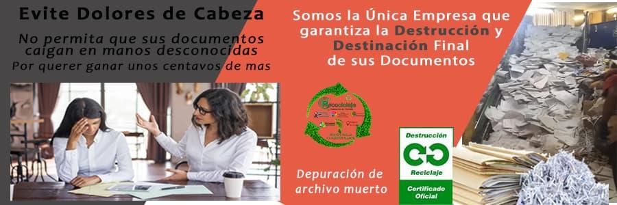Destrucción de Archivo